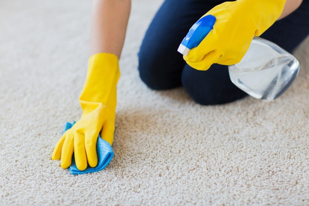 cleaner spraying soap to carpet
