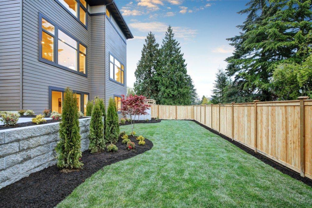 Backyard landscape of house