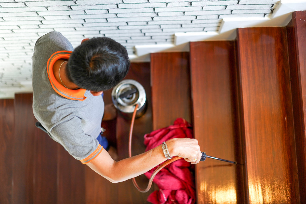 pest control dealing with termites