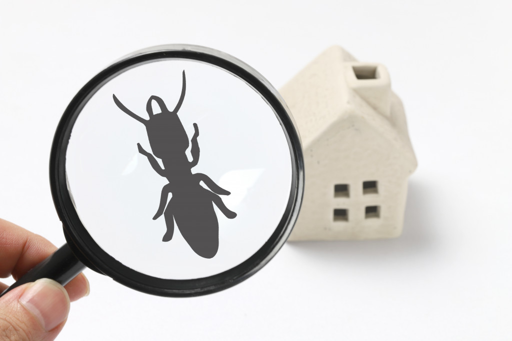 5 Landscaping Mistakes That Can Attract Pests to Your Property